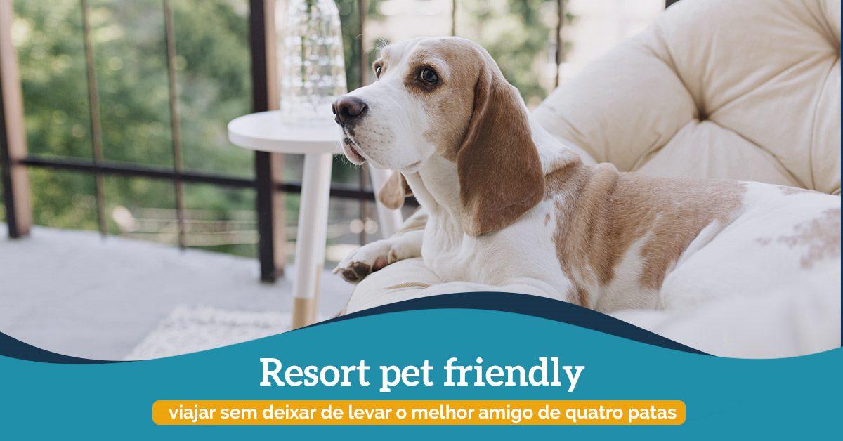 resort pet friendly